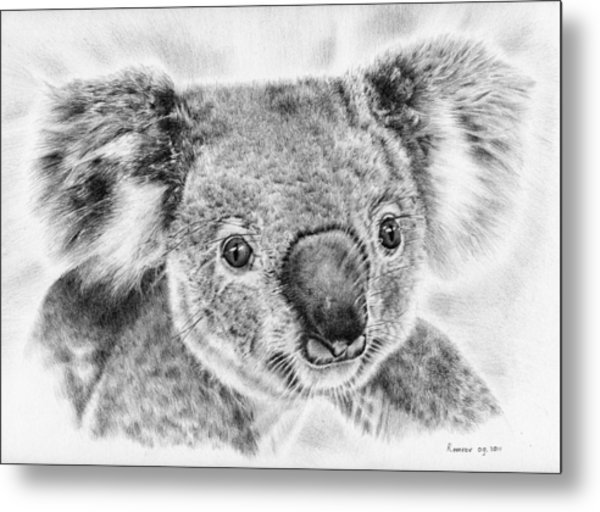 Koala Newport Bridge Gloria Metal Print