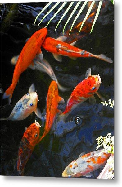 Koi Fish II Metal Print by Elizabeth Hoskinson