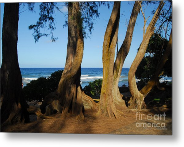 Koki Beach Metal Print