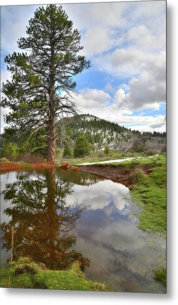 Kolob Reflection Metal Print