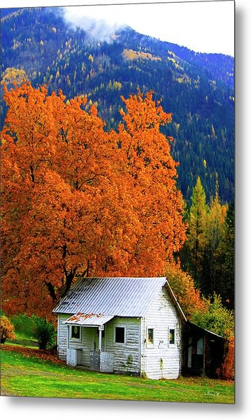 Kootenay Autumn Shed Metal Print