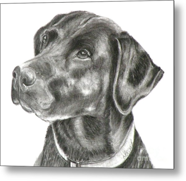 Lab Charcoal Drawing Metal Print