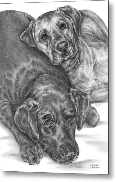 Labrador Dogs Nap Time Metal Print