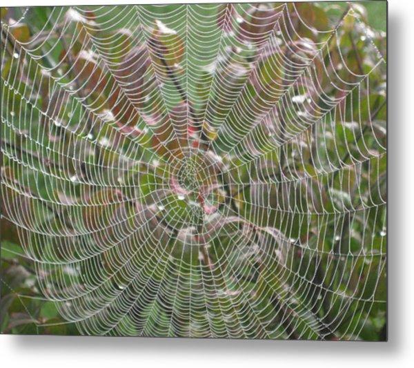 Lace Metal Print by Linda Raphael
