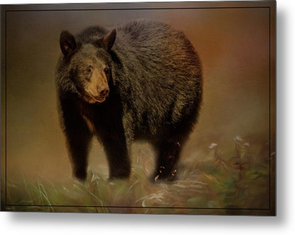 Black Bear In The Fall Metal Print