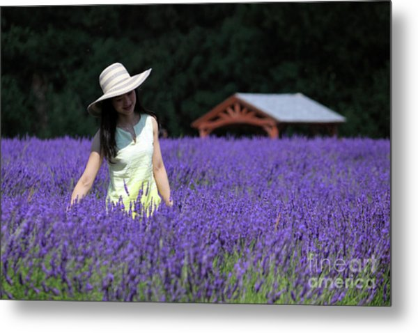 Lady In Lavender Metal Print