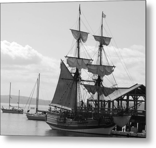 Lady Washington Metal Print by Sonja Anderson