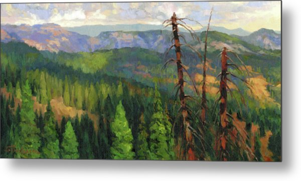 Metal Print featuring the painting Ladycamp by Steve Henderson