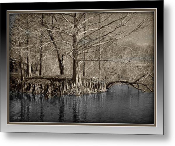 Lake Alice Metal Print