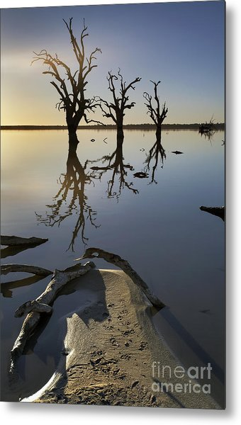 Lake Bonney Barmera Riverland South Australia Metal Print