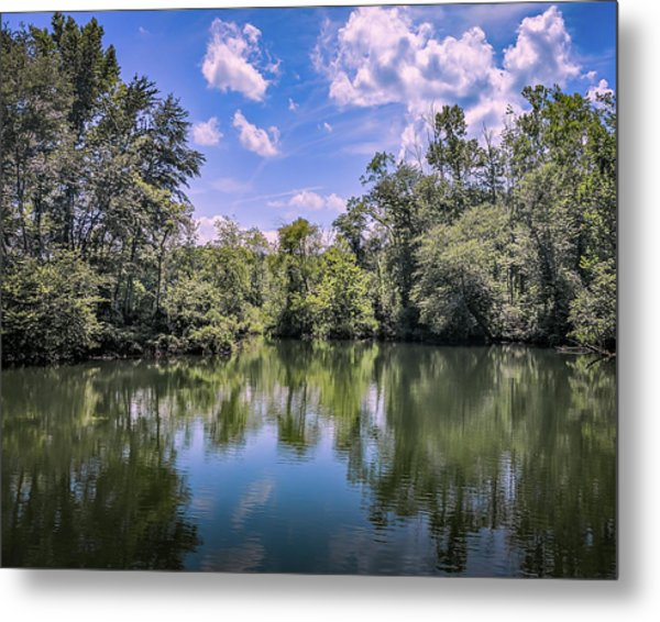 Lake Cove Metal Print