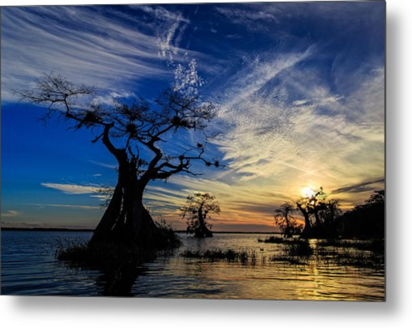 Lake Disston Sunset Metal Print