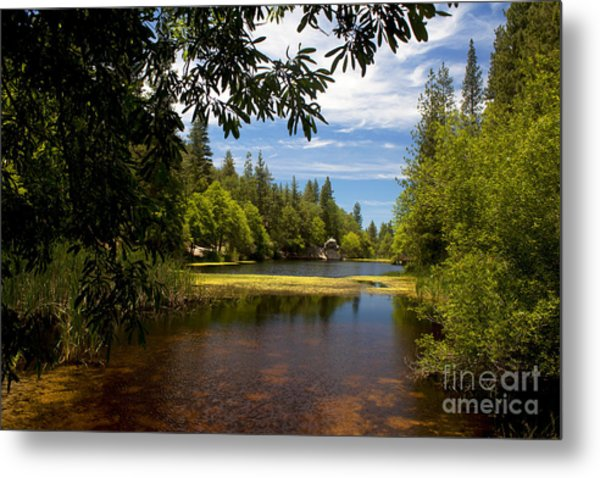Lake Fulmor View Metal Print