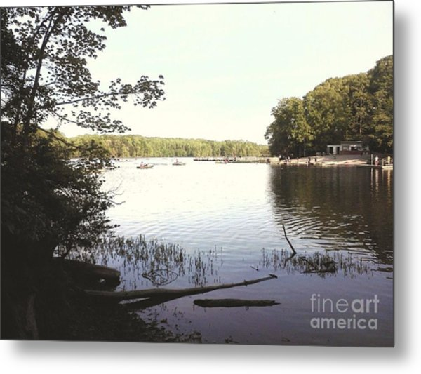 Lake At Burke Va Park Metal Print