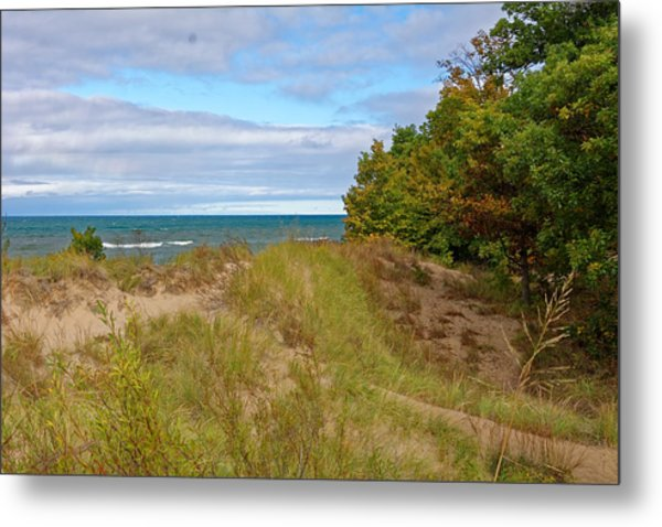 Lake Michigan Shore Metal Print