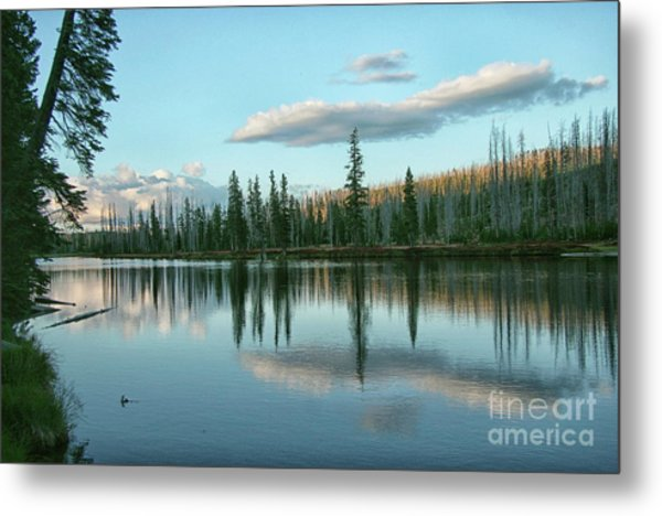 Lake Reflections Metal Print
