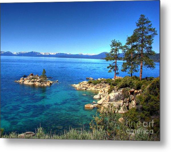 Lake Tahoe State Park Nevada Metal Print