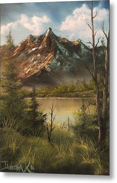 Lake View Mountain  Metal Print