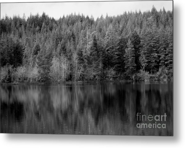 Lakeside Retreat Metal Print