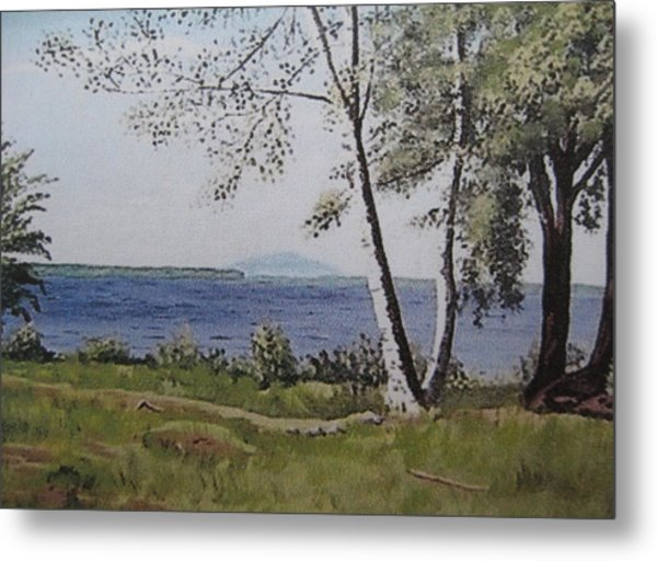 Lakeview Landing Metal Print