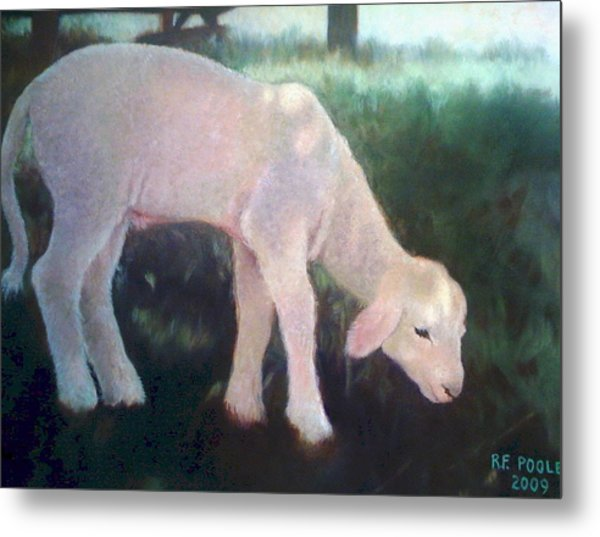 Lamb Of God Metal Print by Rebecca Poole