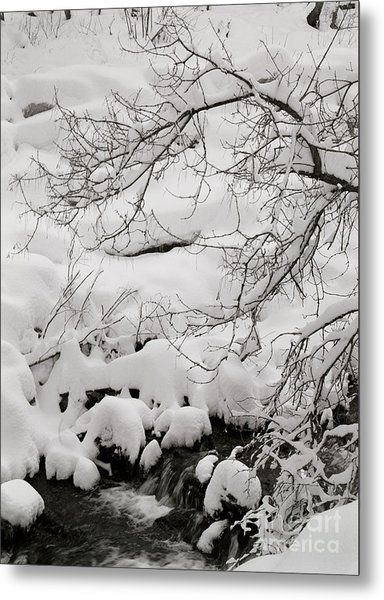 Lambs Canyon In Winter Metal Print by Dennis Hammer