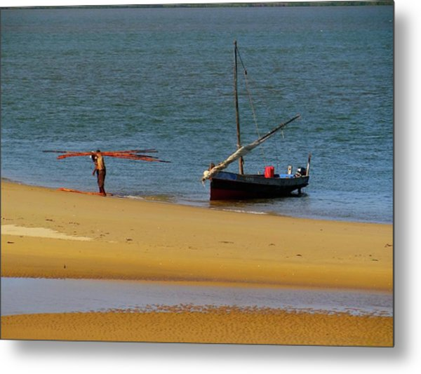 Lamu Island - Wooden Fishing Dhow Getting Unloaded - Colour Metal Print