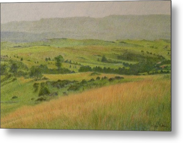 Land Of Grass Metal Print