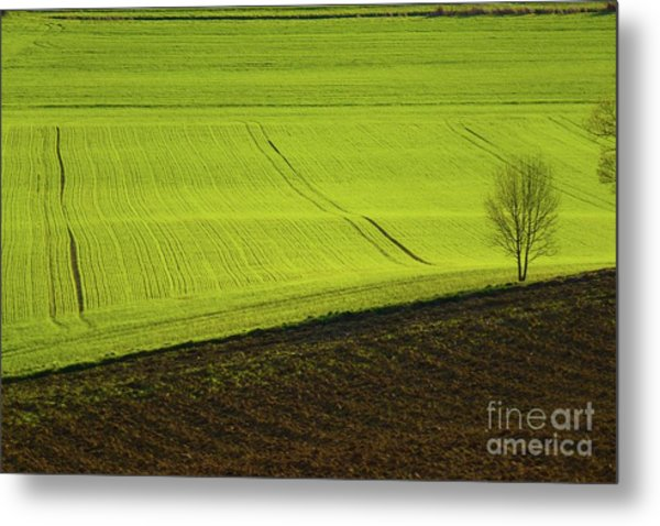 Landscape 4 Metal Print