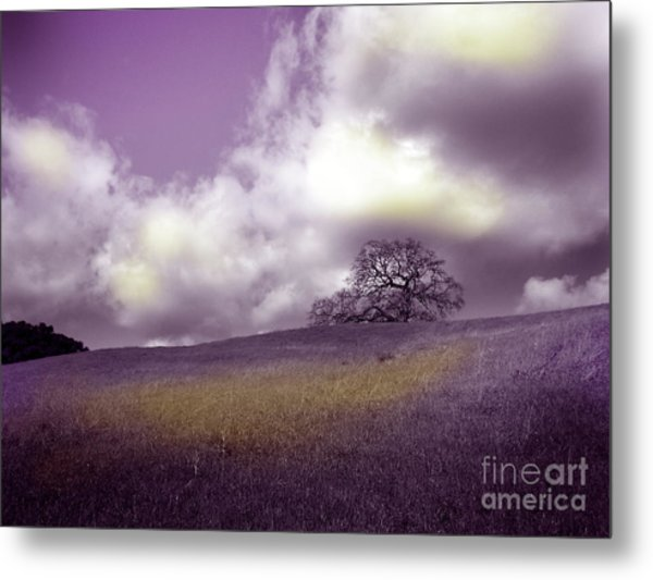 Landscape In Purple And Gold Metal Print by Laura Iverson