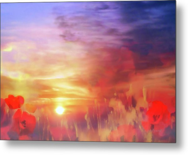 Landscape Of Dreaming Poppies Metal Print