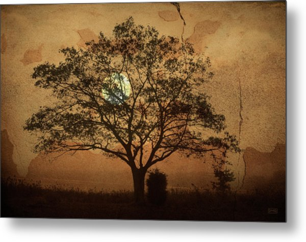 Landscape On Adobe Wall Metal Print