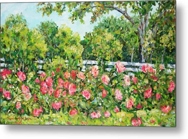 Landscape With Roses Fence Metal Print