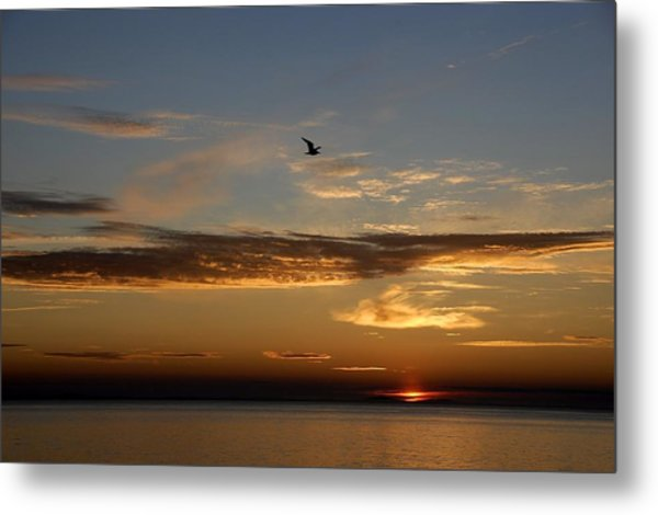Lanesville Sunset Metal Print