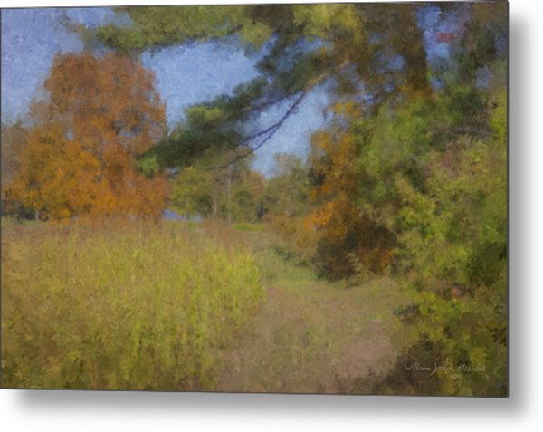 Langwater Farm Tractor Path Metal Print