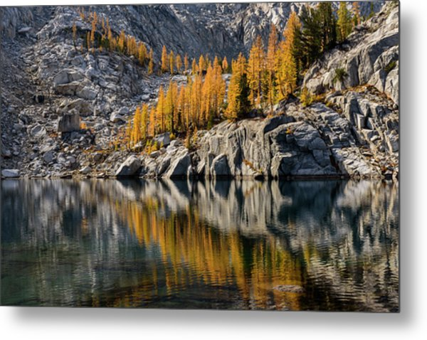 Larch Reflection In Enchantments Metal Print