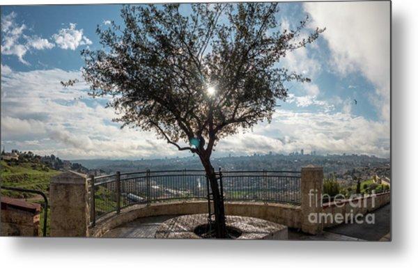 Large Tree Overlooking The City Of Jerusalem Metal Print