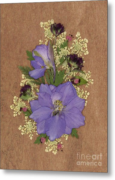 Larkspur And Queen-ann's-lace Pressed Flower Arrangement Metal Print