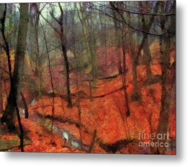 Last Days Of Autumn - Limited Edition Metal Print