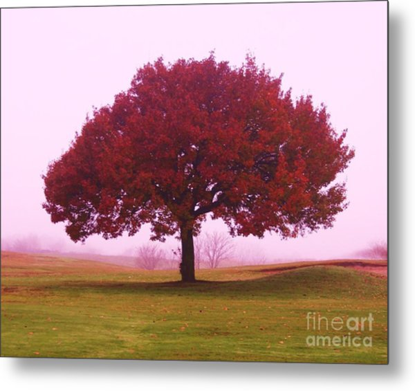 Last Leaf To Fall Metal Print by Dennis Curry