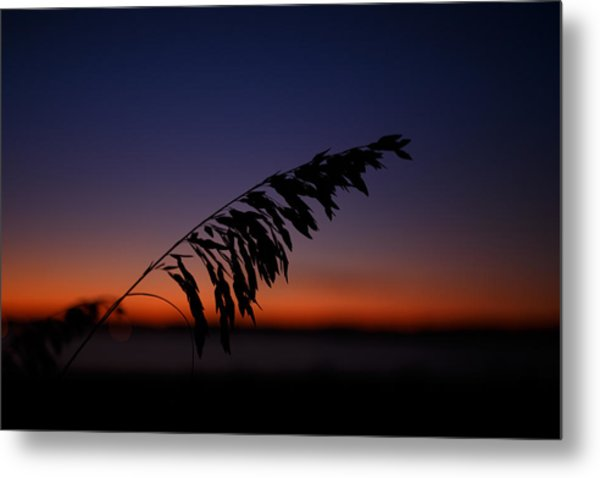 last light at Hilton Head Island Metal Print