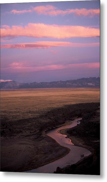 Last Light Metal Print by Lynard Stroud