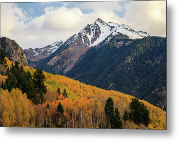 Last Light Of Autumn Metal Print