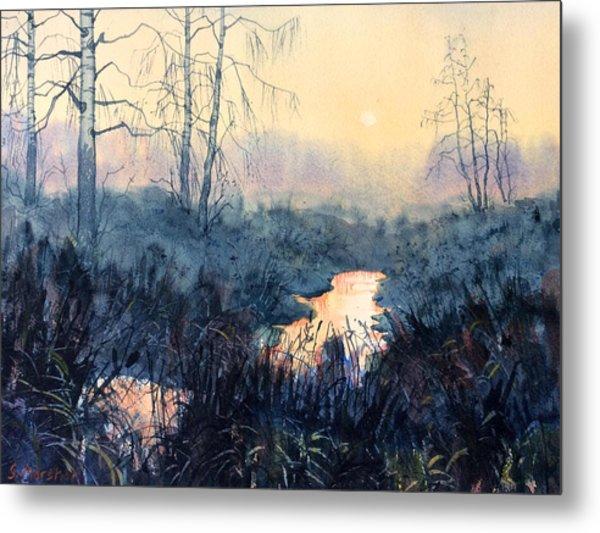 Last Light On Skipwith Marshes Metal Print
