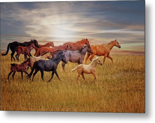 Last Light's Run Metal Print