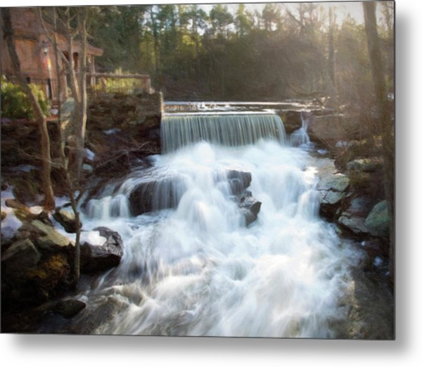 Metal Print featuring the photograph Late Afternoon At The Duck Pond by Sue Collura