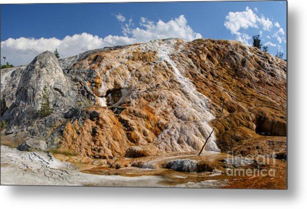 Late Day Sun On Palette Spring Metal Print
