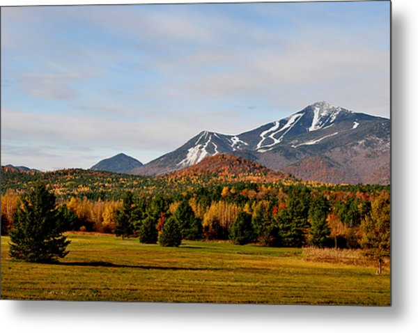 Late Fall Early Winter Metal Print