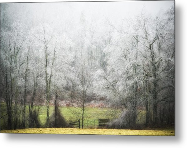 Late Fall Ice Storm Central Ma 2008 Metal Print by Richard Danek