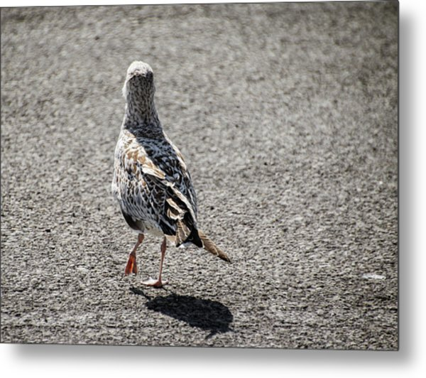 Later, Ciao - Metal Print